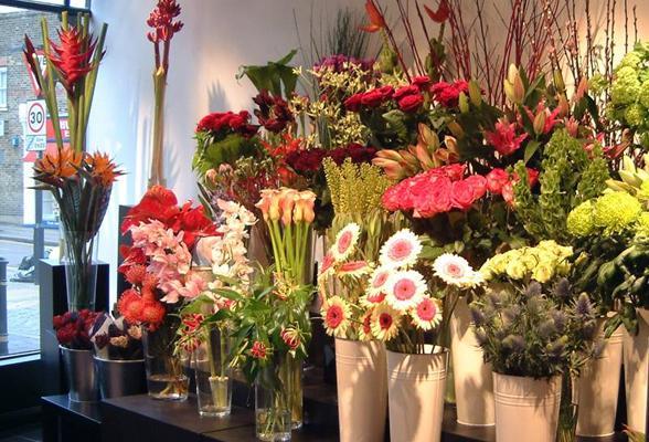 100+ Catchy & Creative Florist & Flower Shop Names Ideas